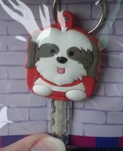 Shih Tzu Key Guard