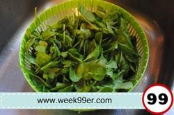 ozeri salad spinner