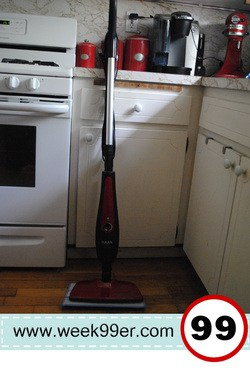 Haan Si40 Agile Steam Mop Product Review