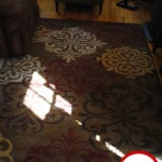 Mohawk Floor Rug – Product Review and Giveaway!
