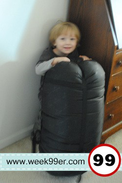 Mammoth Sleeping Bag