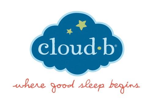 Cloud B Logo