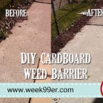 DIY Cardboard Weed Barrier – #summersurvivalguide