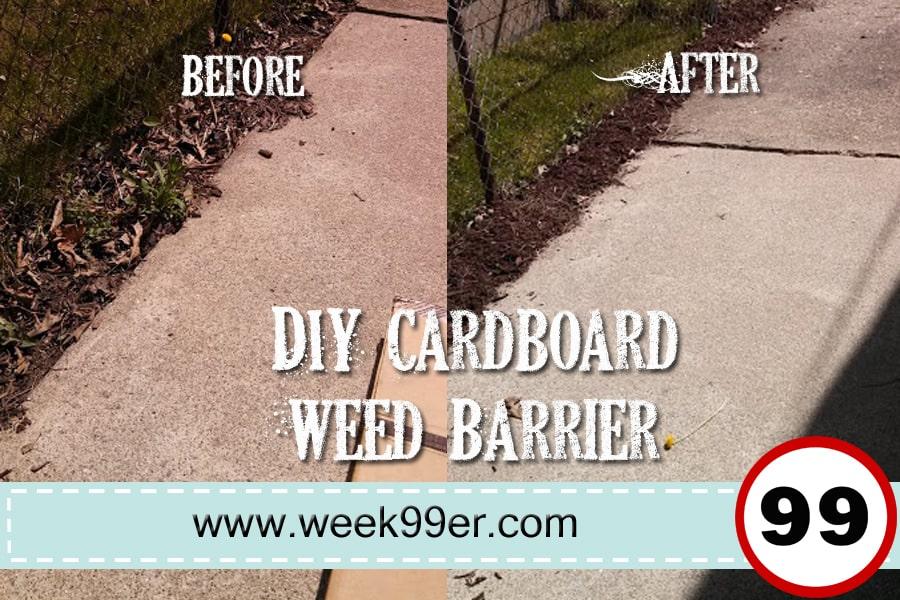 Diy Cardboard Weed Barrier