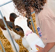 Attend Breakfast on the Farm to learn more about Michigan's farming industry!