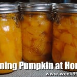 Canning Pumpkin at Home, Freezing it and How a $5 pumpkin can last all Fall!