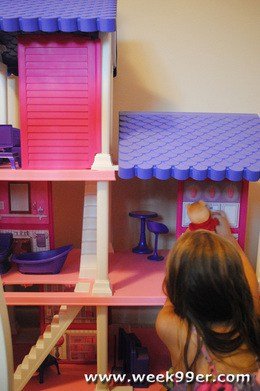 Fashion Delightful Dollhouse Review