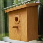 My Spy Birdhouse – For Our Little Ornithologist #christmascountdown