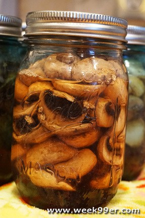 Canned Mushrooms Recipe