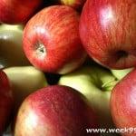 Double Up Food Bucks Returns to Farmers Markets June 1st