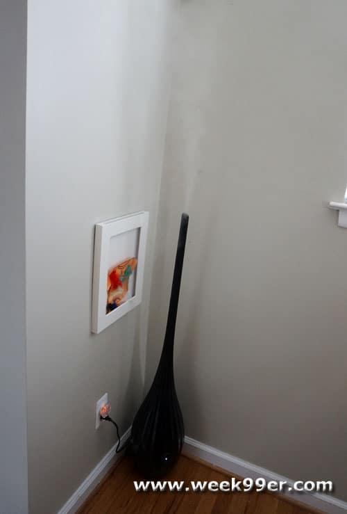 Luma Comfort Humidifier Review