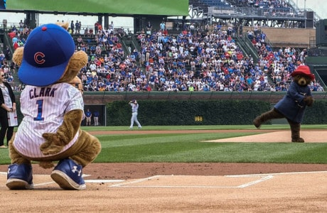 Paddington Bear Throws First Pitch