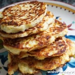 Summer Squash Fritters Recipe