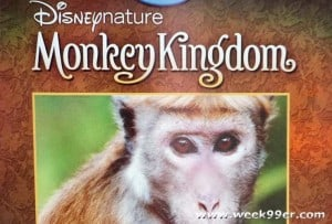 Disneynature Brings Monkey Kingdom to Your Home