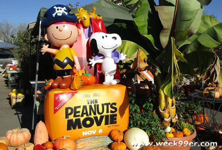 Peanuts Pumpkin Patch location