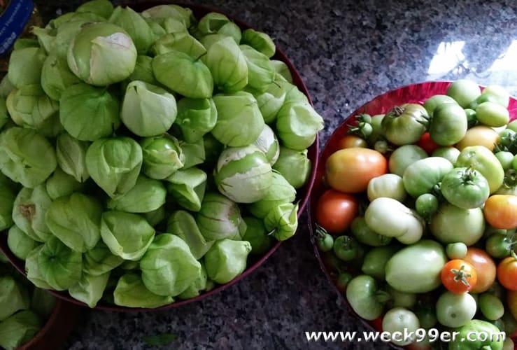 green tomato and tomatillo salsa recipe