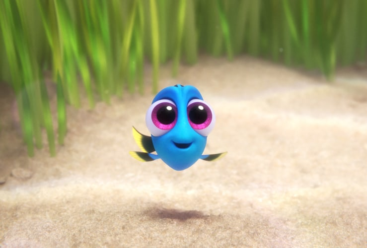 Image result for baby fish