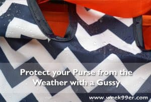 Protect Your Purse from the Weather with The Gussy