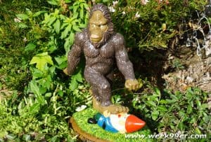 Garden Gnomes You Need in Your Garden Year Round