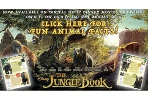 Animal Facts and Bonus Clips from The Jungle Book! #thejunglebook