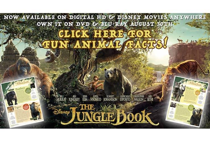 junglebook activity sheets