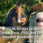 The Wild Life Arrives on Blu-ray Combo Pack, DVD, and On Demand November 29