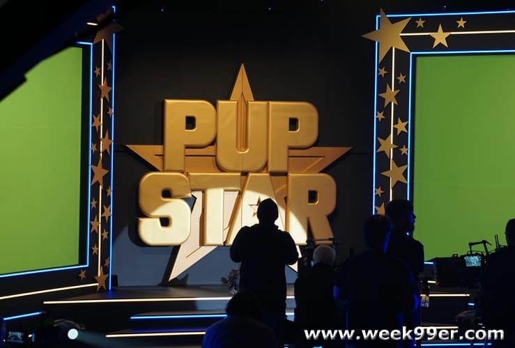 Pup Star Season 2 Behind the Scenes