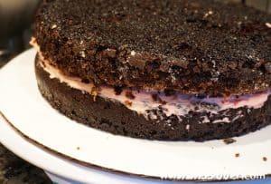 gluten free double chocolate cake recipe
