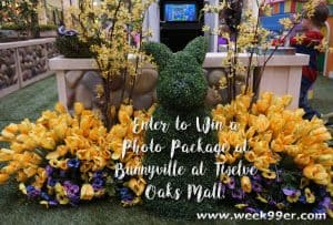 Visit Bunnyville at Twelve Oaks Mall for Your Pictures with Easter Bunny + Win a Photo Package! #Easter