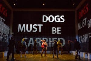 The Curious Incident of the Dog in the Night-Time Premieres at the Fisher Theatre #BroadwayinDetroit