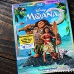 Feel the Call of the Ocean When You Bring Moana Home #Moana
