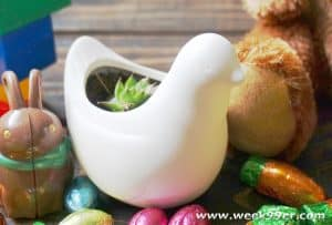 Add Some Variety to Your Easter Baskets this year With Oriental Trading