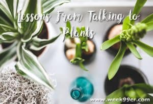Lessons From Talking to Plants #Behindtheblogger