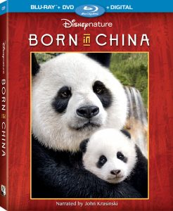 born in china at home release announcement