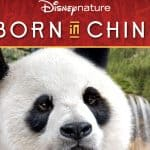 Disney's Born In China Being Released in August #borninchina