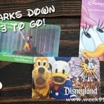 A Crazy Goal – Halfway Done! Let's Visit All of the Disney Parks! #Disney