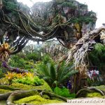 Visit Another World When You Go to Pandora at Animal Kingdom #VisitPandora