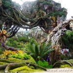 Visit Another World When You Go to Pandora at Animal Kingdom #VisitPandora