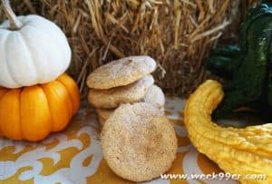 Gluten Free Pumpkin Snickerdoodle Recipe