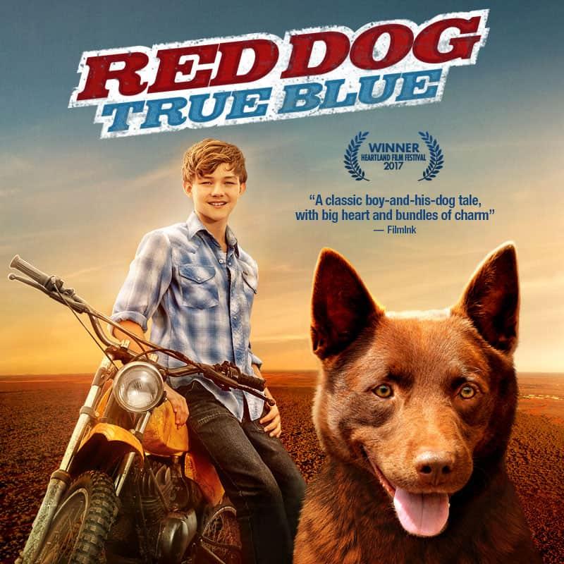 Red Dog True Blue Announcement