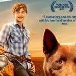 Red Dog: True Blue is Coming to DVD
