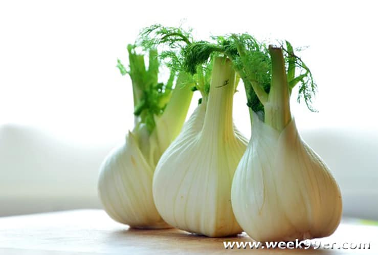 fennel uses