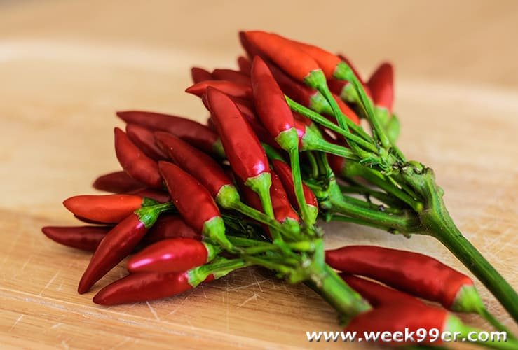 Working with Fresh Chilies In Your Kitchen and Recipes
