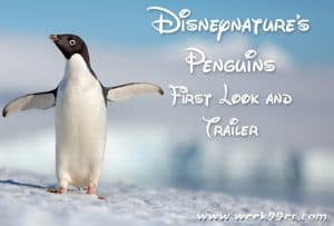 Disneynature is Getting Cuter with Penguins! Watch the First Trailer Here! #DisneynaturePenguins
