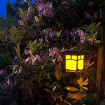 Get Your Garden Glowing at Night