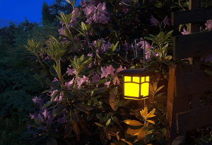 Night time gardening tips