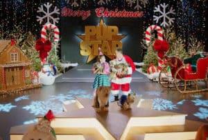 Puppy Star Christmas Announcement