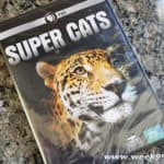See Large Cats like Never Before with Nature: Super Cats from PBS