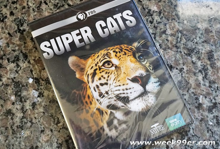PBS Super Cats DVD Review