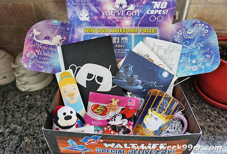walt life subscription box review
